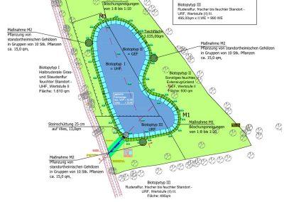 Planung eines naturnahen Teiches